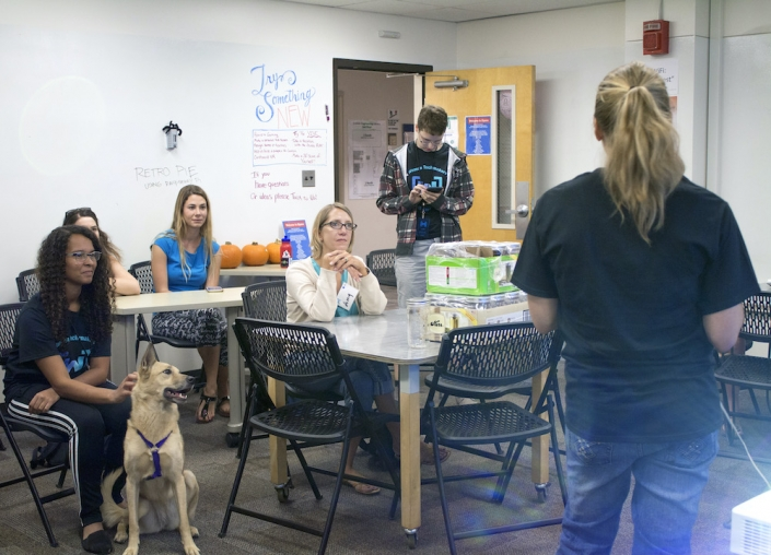 People and a dog sitting at a table in a UA Women's Hackathon session
